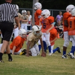 Broncos-9-21-15-17