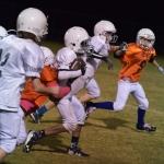 Broncos-10-19-15-48